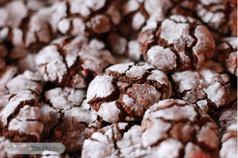 Double Chocolate Holiday Mint Cookies