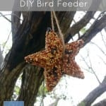 How to Make a DIY Bird Feeder this Summer
