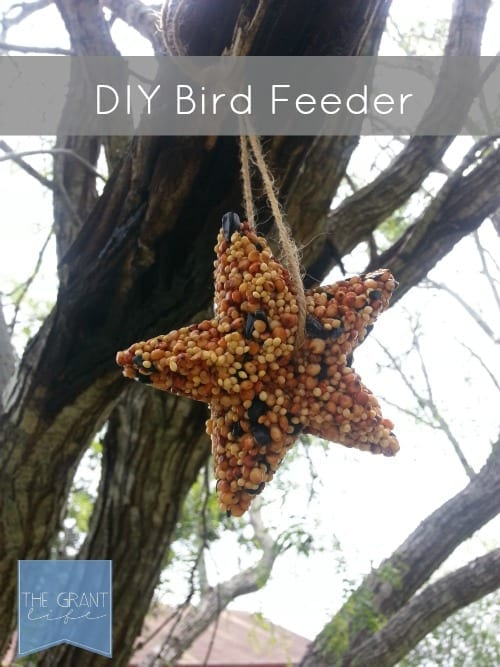 How-to-Make-a-DIY-Bird-Feeder-this-Summer
