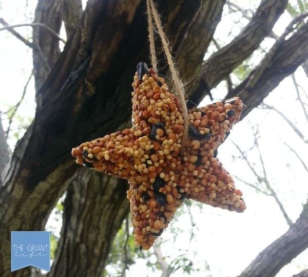 Summer craft for kids - make your own bird feeder