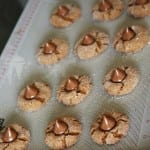 Easy Homemade Recipe Gingerbread Blossoms