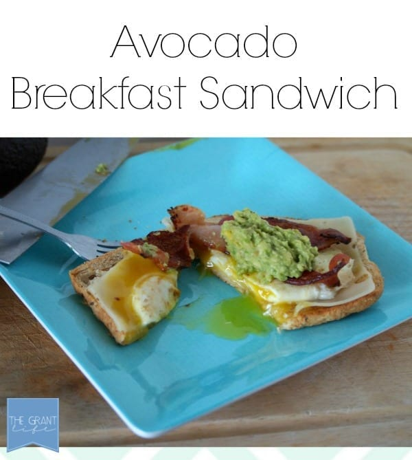 Avocado breakfast sandwich. Start your day off with a little green!