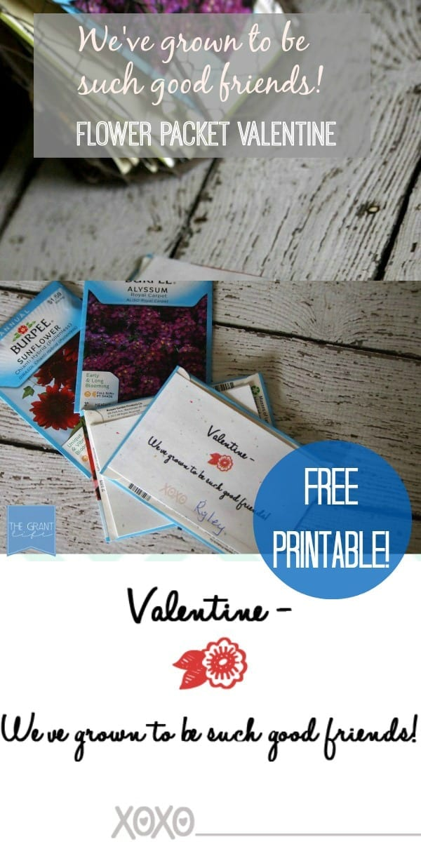 Flower packet Valentine.  Great non-candy Valentine for your kiddos!