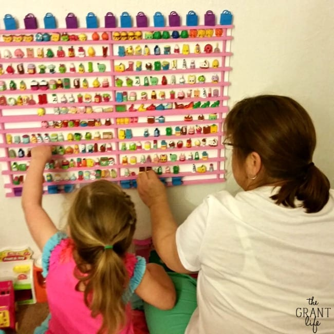 DIY Shopkins Storage Rack!