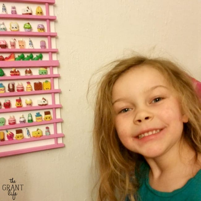 DIY Shopkins Storage Rack