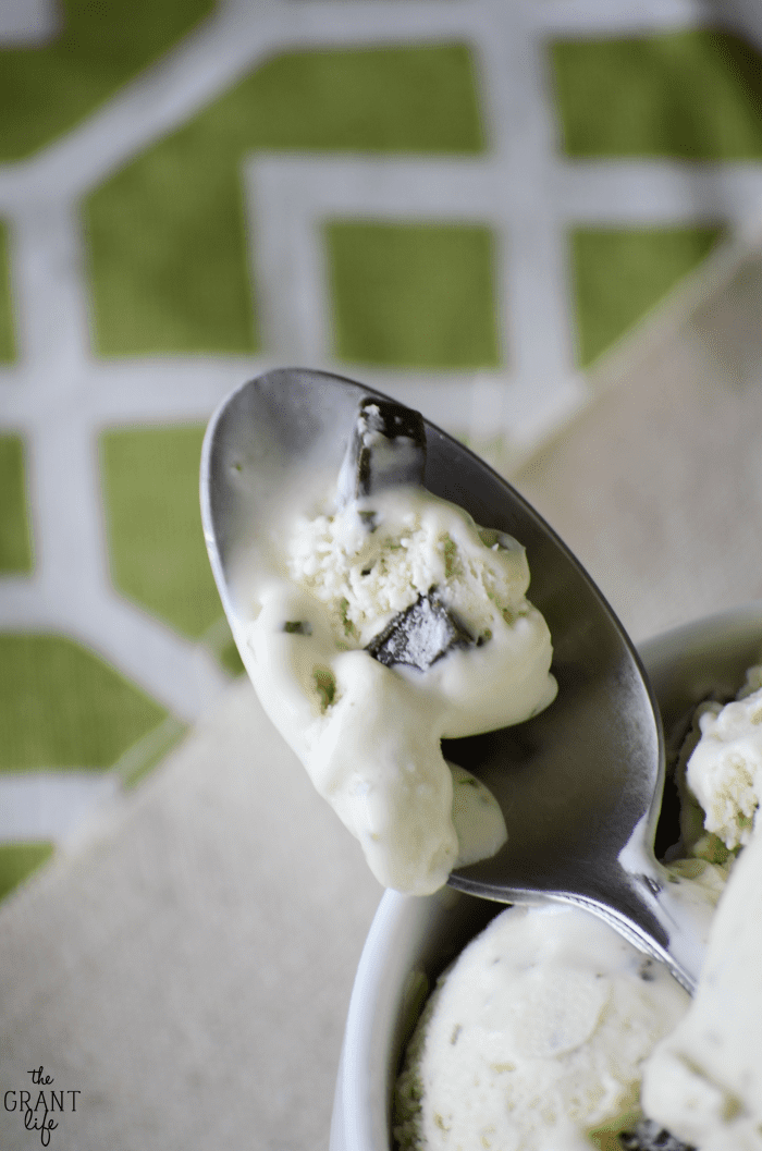 Easy homemade mint chocolate chip ice cream