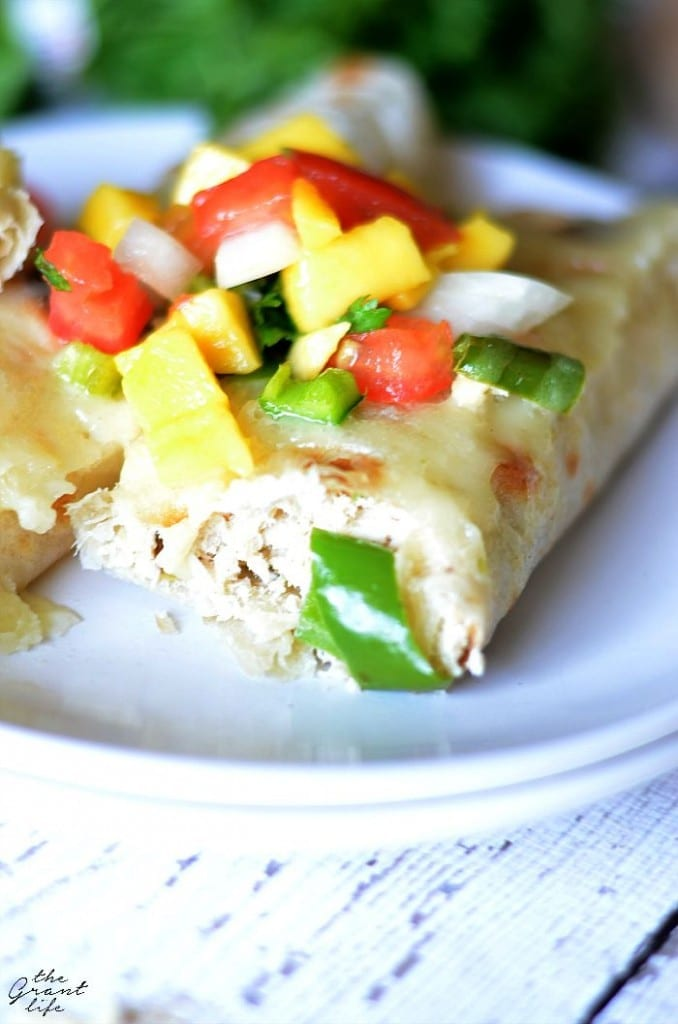 Creamy chicken and hatch chili enchiladas