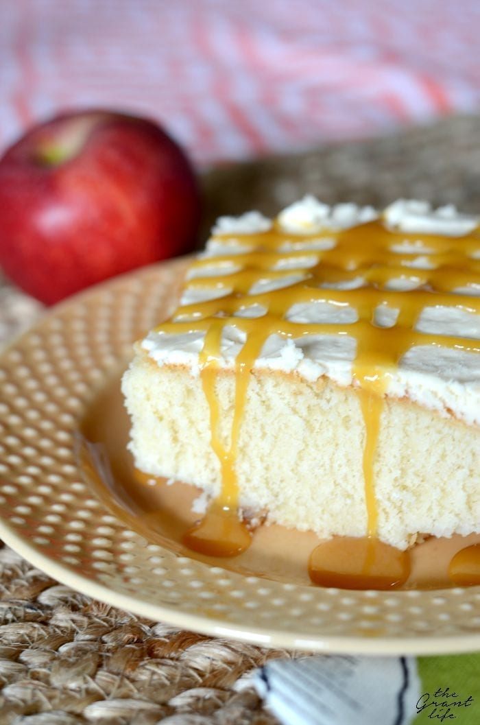 Salted caramel frosting on top of a butter cake and cinnamon apples!