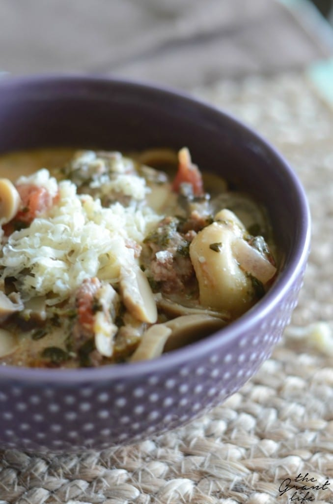 Creamy mushroom and spinach crock pot tortellini soup
