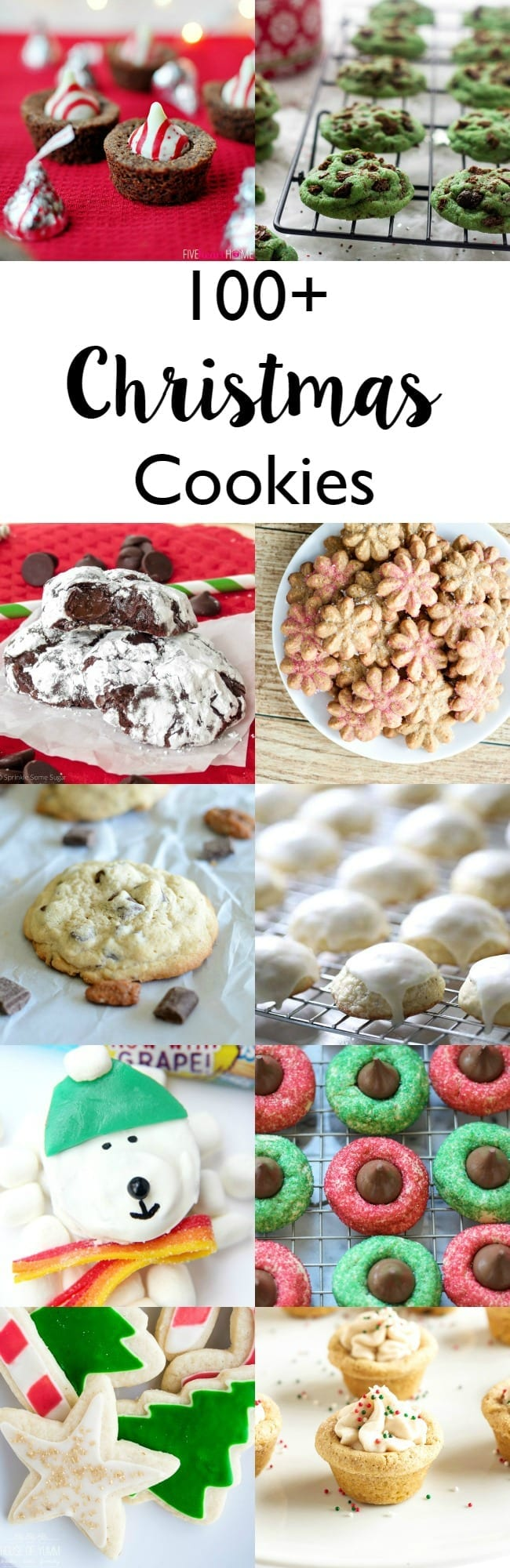 100 plus Christmas cookies