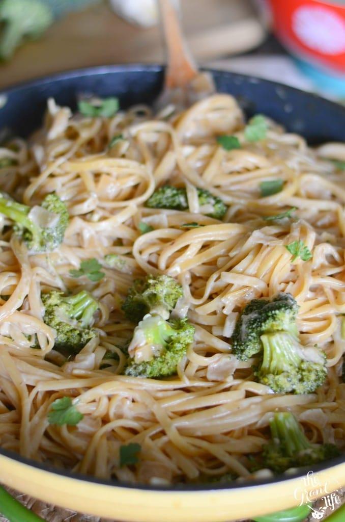 Broccoli Alfredo pasta