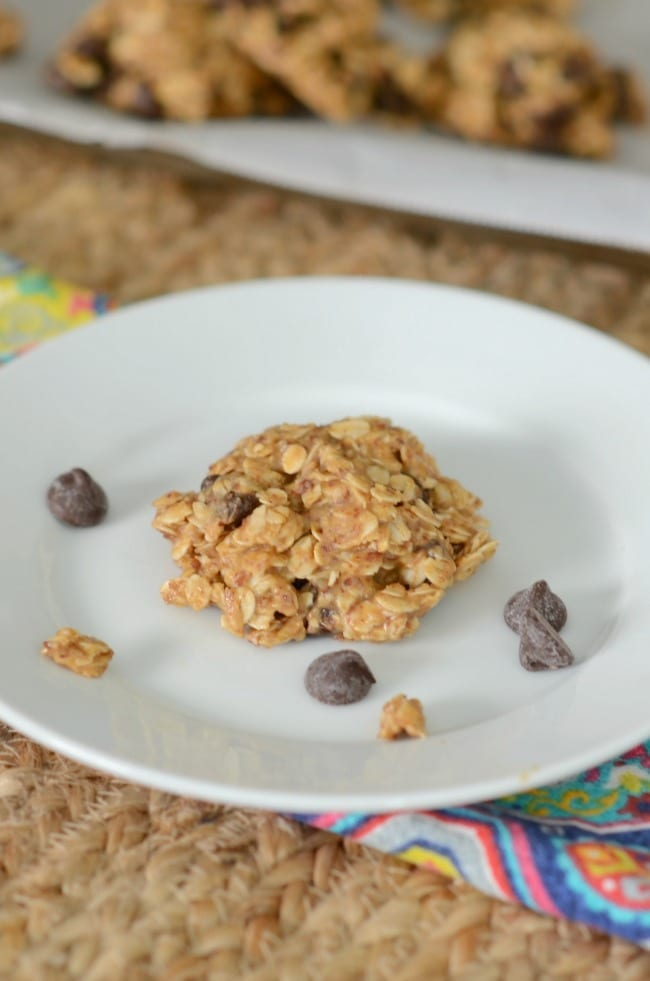 easily the best lactation cookies