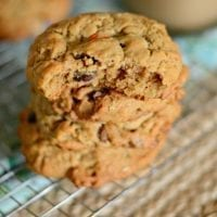 Monster lactation cookies