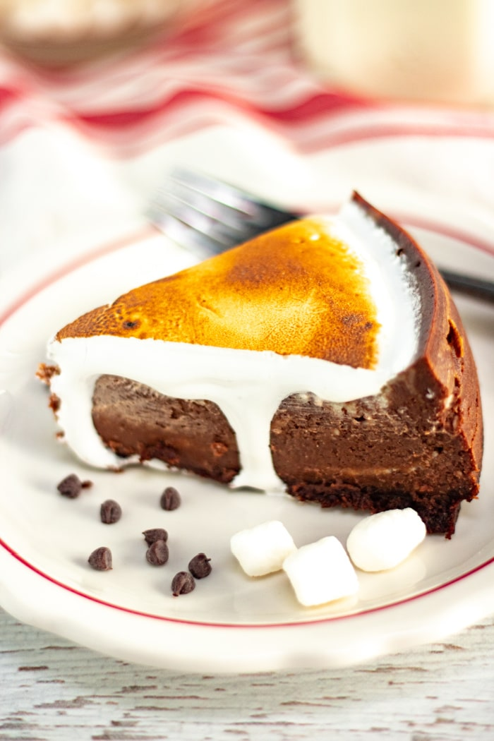 Instant-Pot-hot-chocolate-cheesecake-recipe